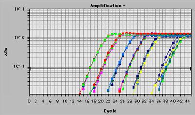 染色质免疫沉淀(chip)技术的难点及应用